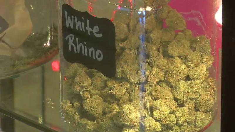 This week a Class Action Lawsuit was filed against the Oklahoma Medical Marijuana Authority....