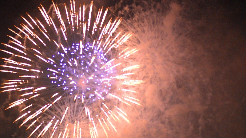 The City of Elgin voted on ordinances allowing fireworks to be used in city-limits, and...