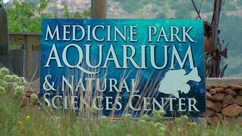Currently there are nine outdoor animal exhibits, with more on the way possibly by end of this...