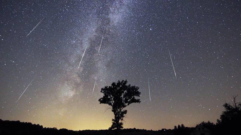 perseid night sky