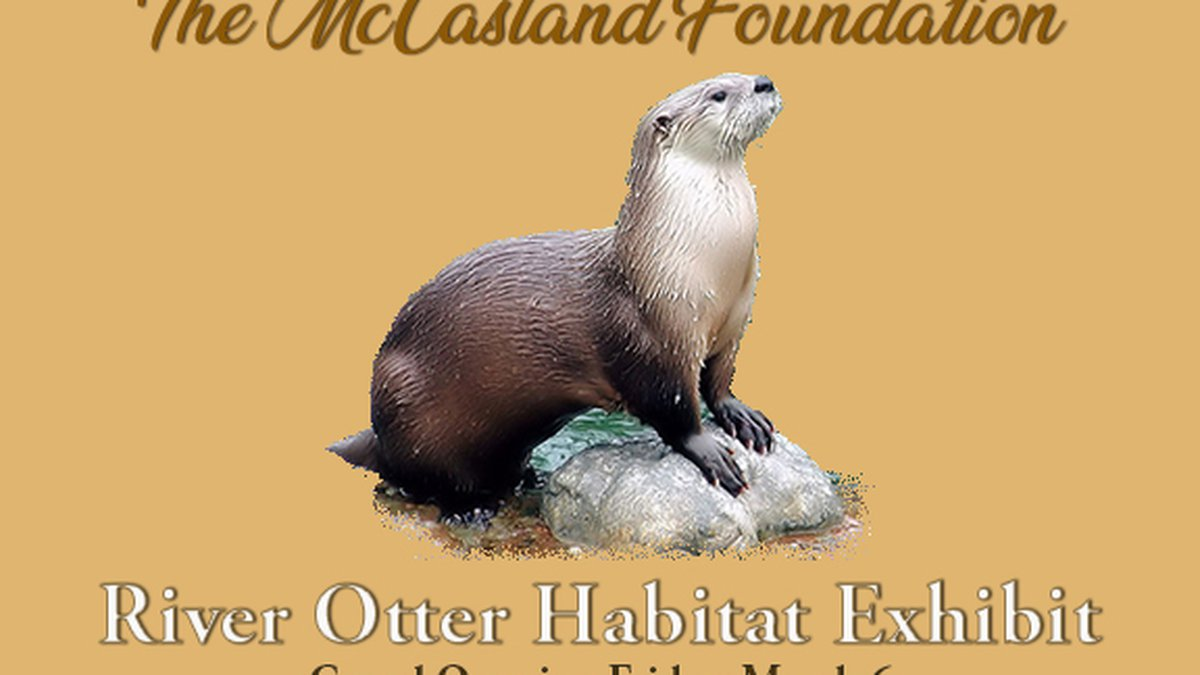 The McCasland Foundation sponsored the River Otter Habitat Exhibit, which will have its...